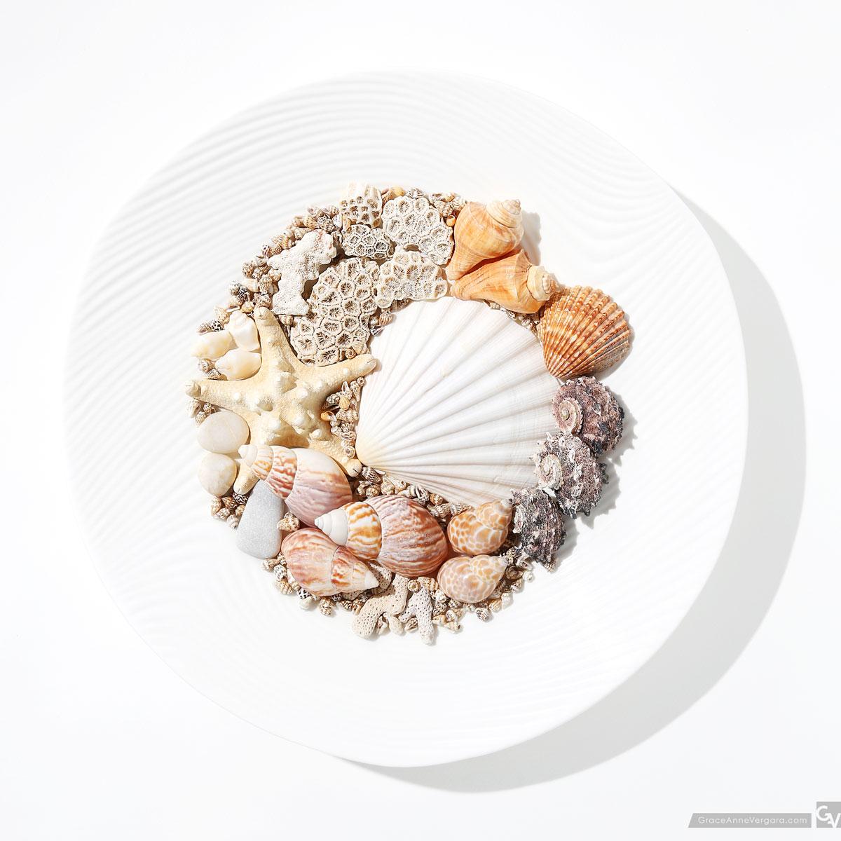 Seashells   © 2015 Grace Anne Vergara